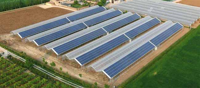 serra fotovoltaica grande